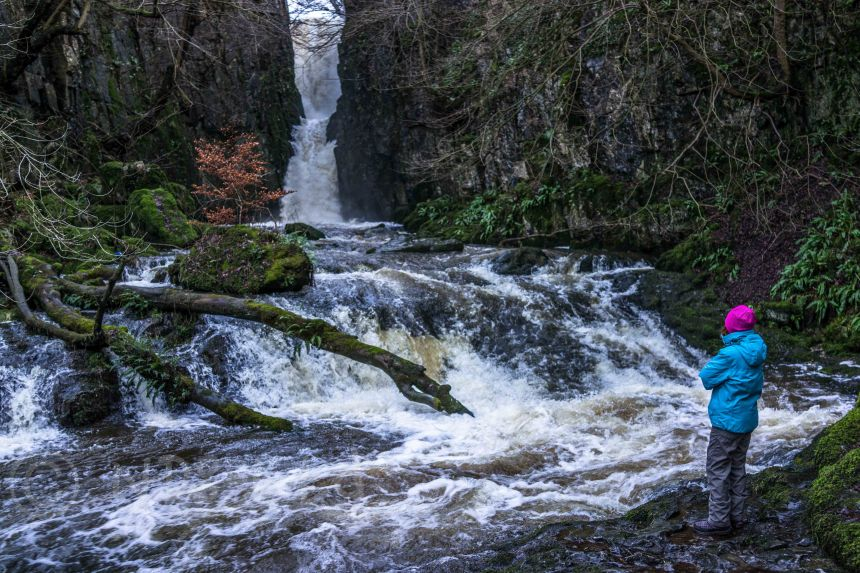 Catrigg Force. Sony RX1