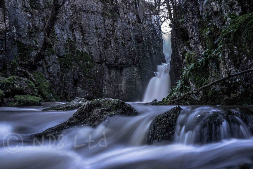 Catrigg Force, Sony RX1