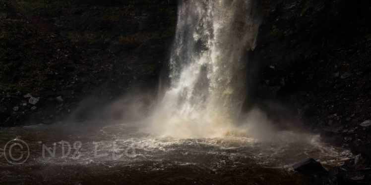 Hardraw Force, Sony RX1
