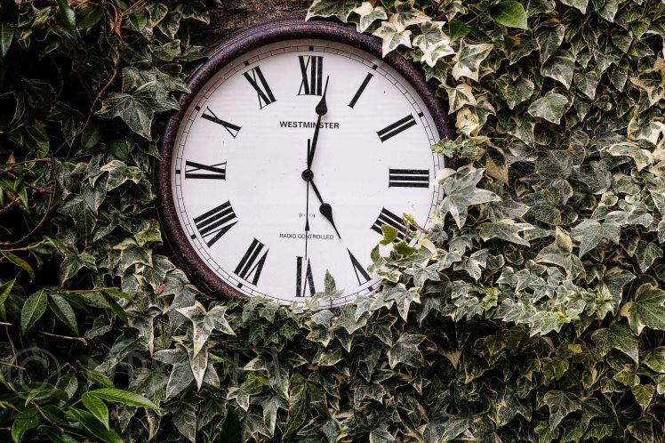 Clock & Green | Merrill DP3