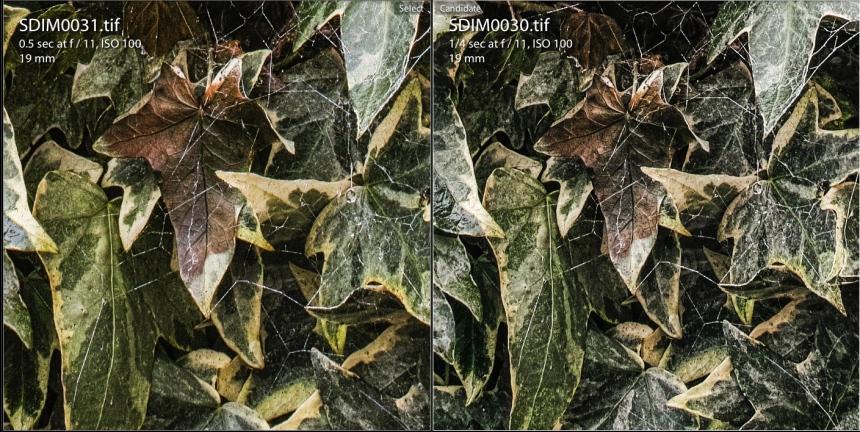 Clocks & Green Detail | Quattro - Merrill | www.richardjwalls.com