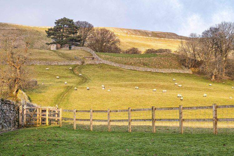Yorkshire Dales | Sigma D3 Merrill | www.richardjwalls