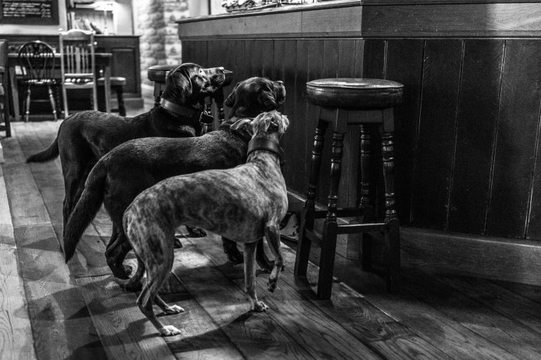 Inside the Boot Inn, Eskdale | Sony RX1 | www.richardjwalls.com